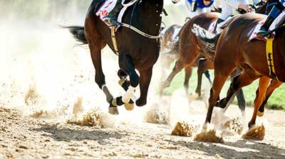 Horses Racing. Multiple horses tightly grouped with sand flying up from their hooves